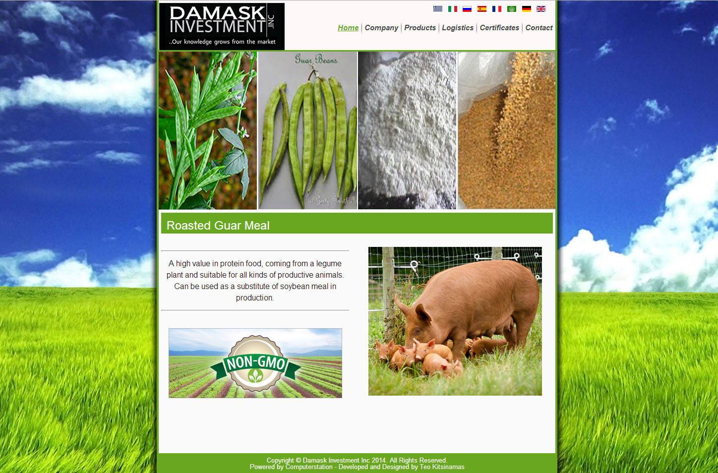 Damask Investment Website